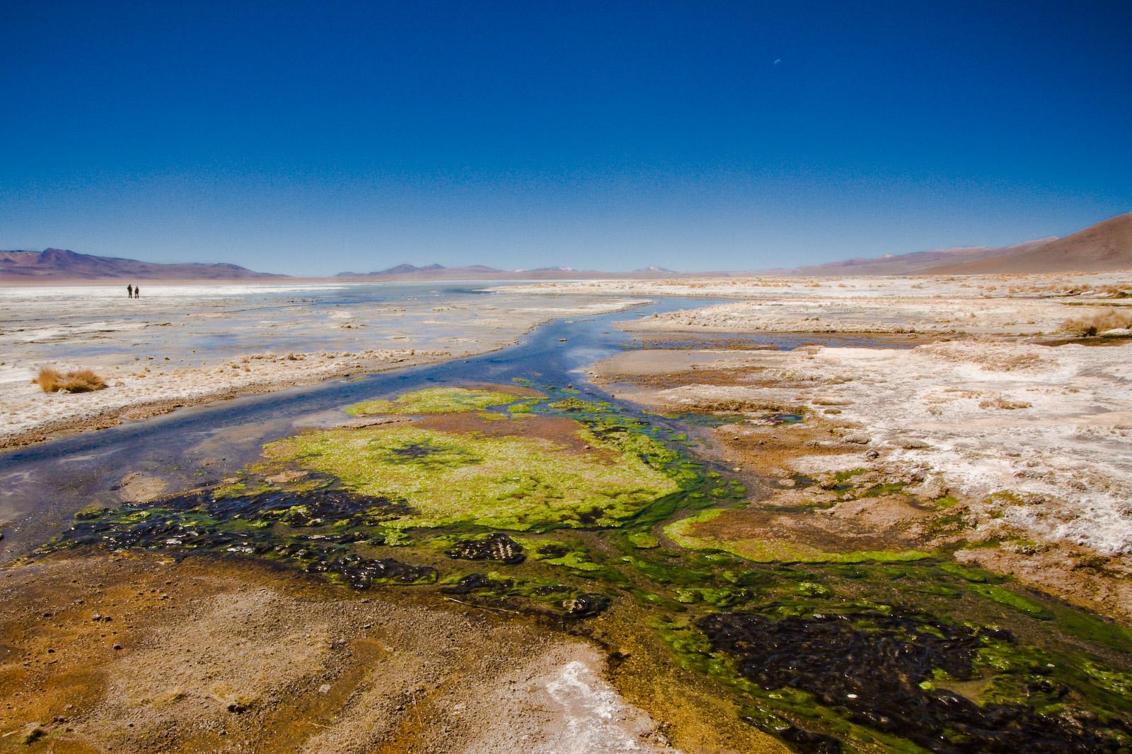 File:Laguna Blanca, Bolivia (2098873574).jpg - Wikimedia ...  File:Laguna Bla...