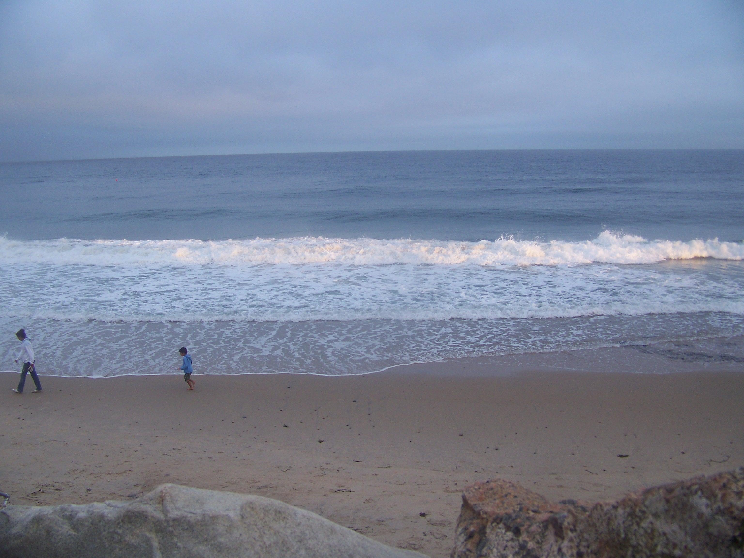Rhode Island Beach Hotels Dog Friendly