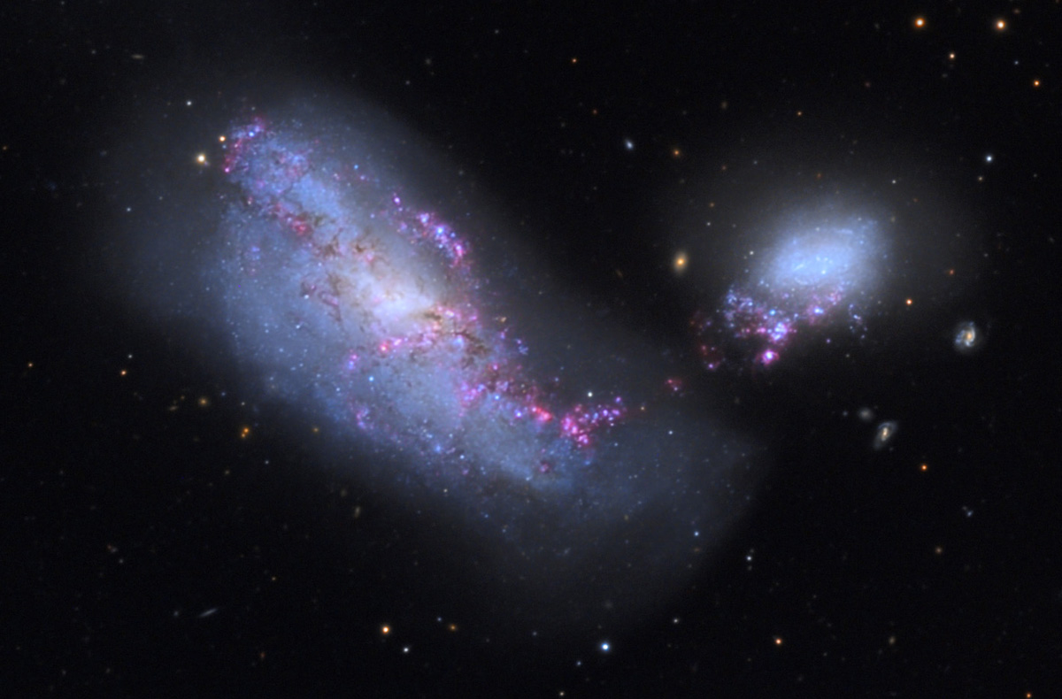 File:NGC4490 Galaxy from the Mount Lemmon SkyCenter Schulman Telescope  courtesy Adam Block.jpg - Wikimedia Commons