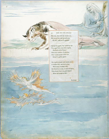 Ode On The Death Of A Favourite Cat Drowned In A Tub Of Gold Fishes Wikisource The Free