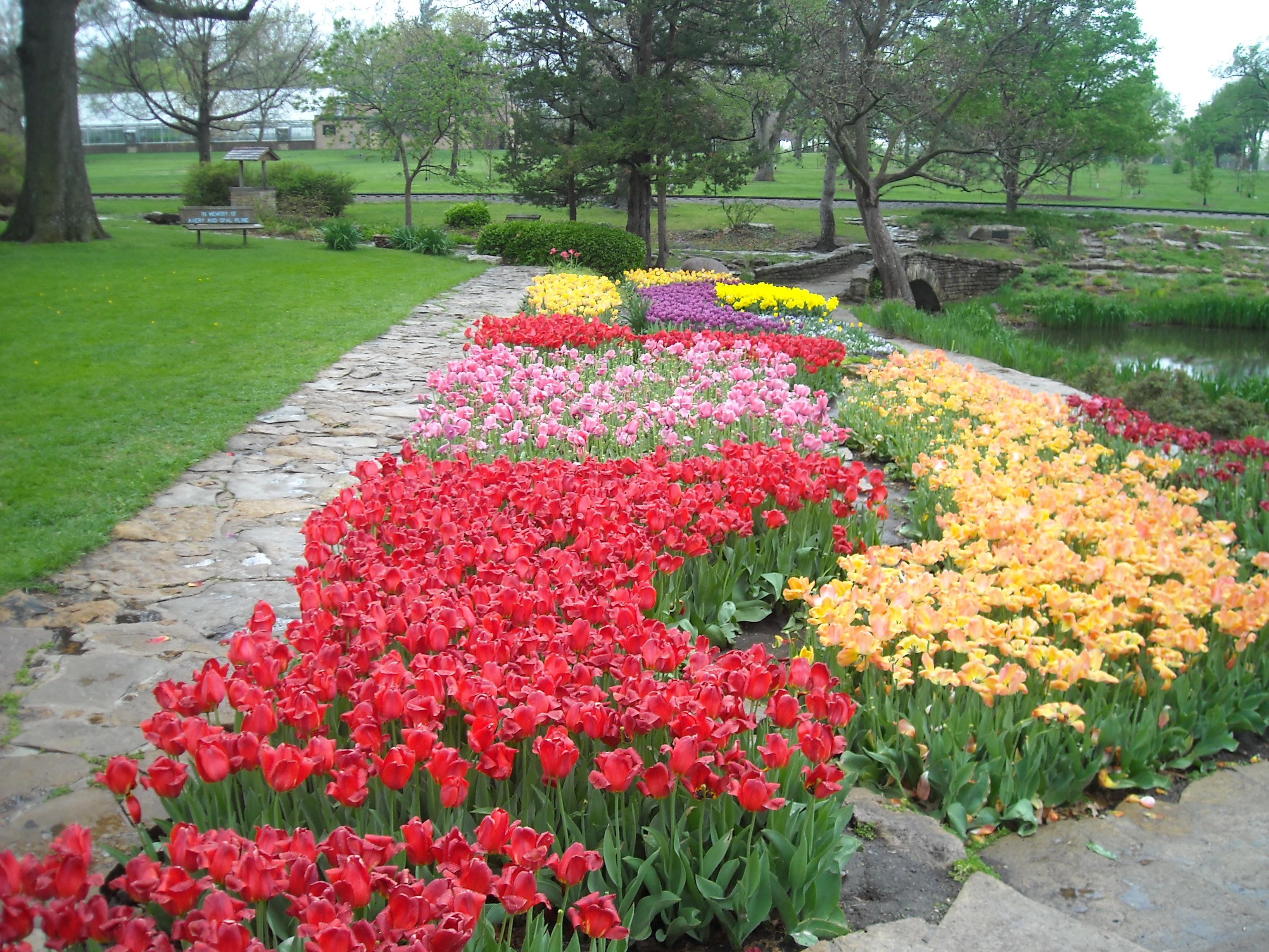 E F A Reinisch Rose Garden
