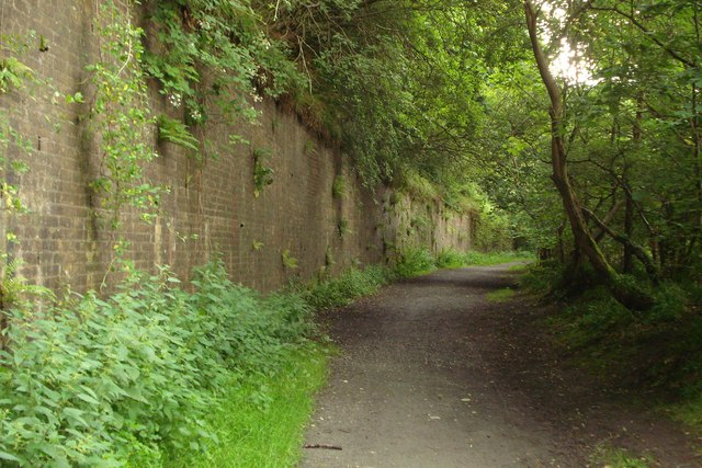 Retaining wall by old railway track - geograph.org.uk - 913295