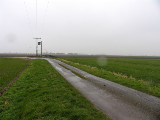 Road_in_the_Fens_-_geograph.org.uk_-_392320.jpg