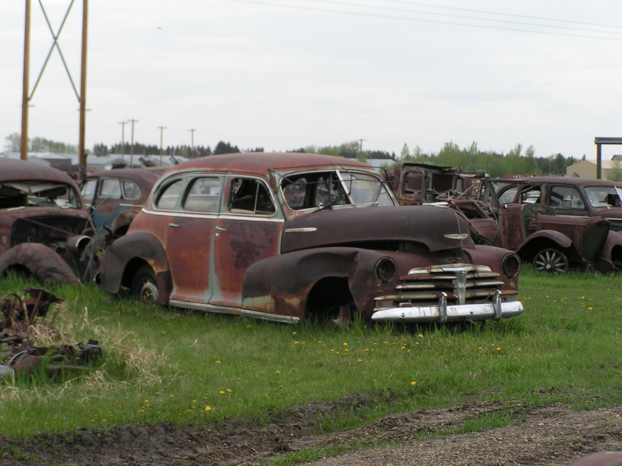File:Rusting Vintage and Classic Cars (2551898241).jpg - Wikimedia ...