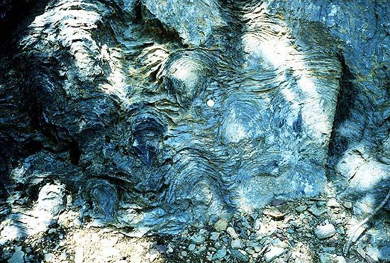 Stromatolites.jpg