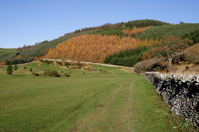 The Borders Abbey Way at Woll Golf Course, Ashkirk - geograph.org.uk - 2155390