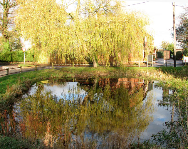 The village pond in Surlingham - geograph.org.uk - 1605731