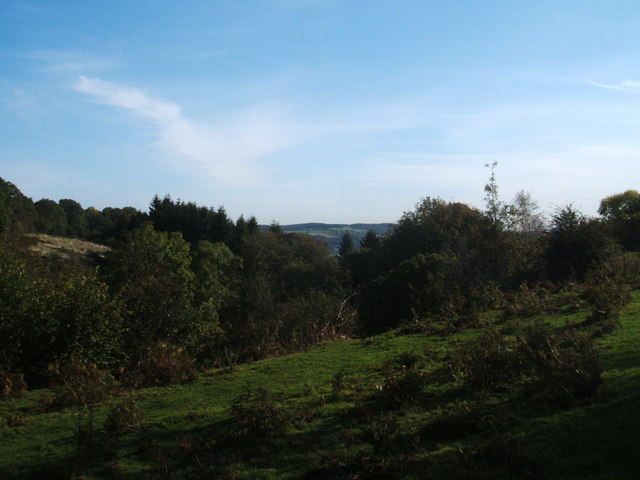 Top of Clough Wood, near Birchover - geograph.org.uk - 1532644