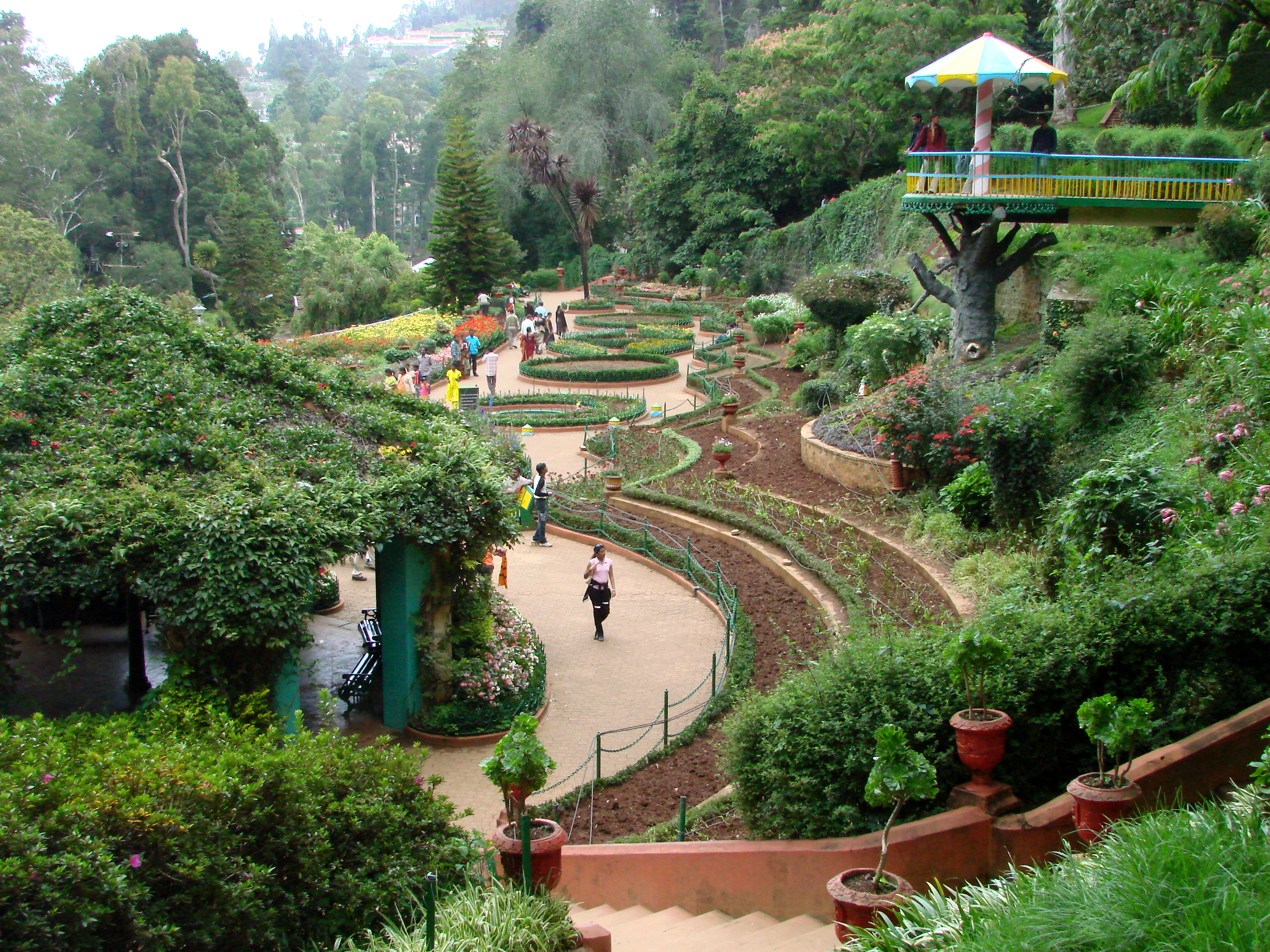 Government Botanical Gardens Ooty Wikipedia