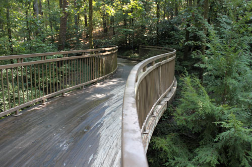 File Bridge Scene At Garvan Woodland Gardens In Hot