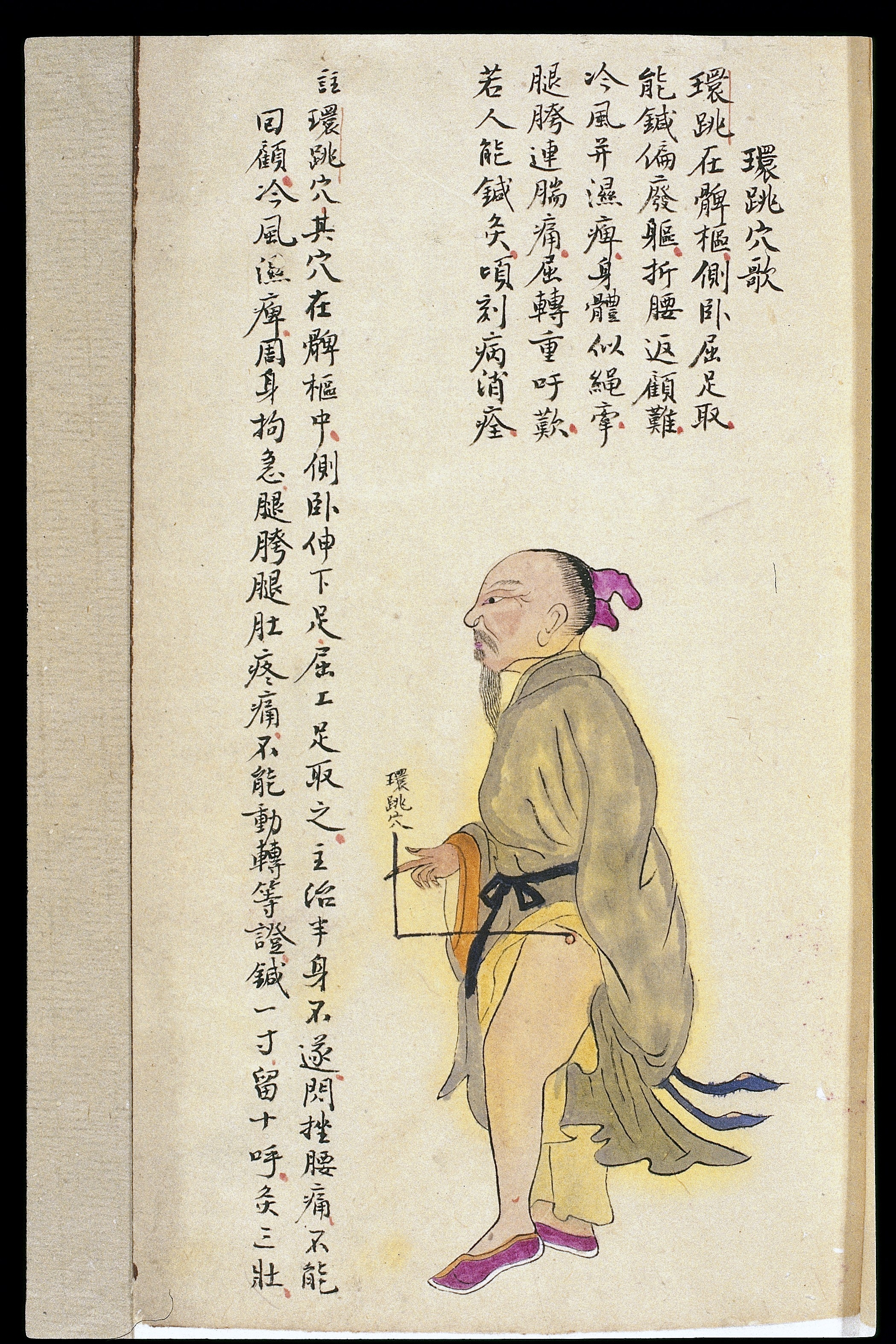 Trigger Points Chart: C19 Chinese MS moxibustion point chart; Huantiao Wellcome ,Chart
