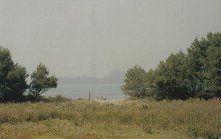 Veduta della spiaggia di Cala di Forno