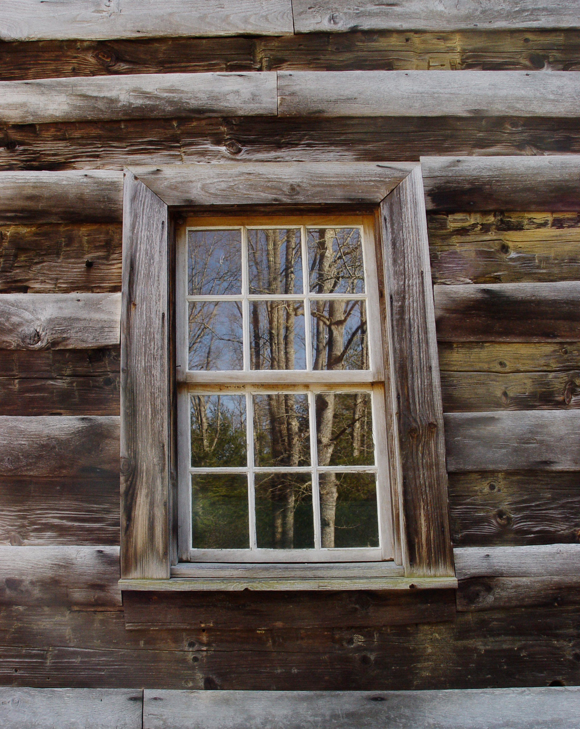 File:Carter-Shields-window,-detail.jpg - Wikimedia Commons