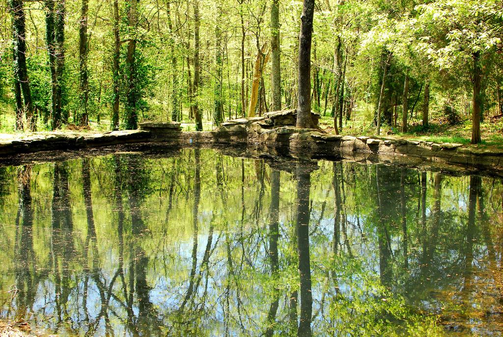 File Cheekwood Botanical Garden Jpg