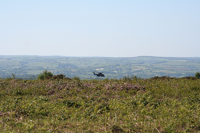 Culmstock, Black Down Common - geograph.org.uk - 178759
