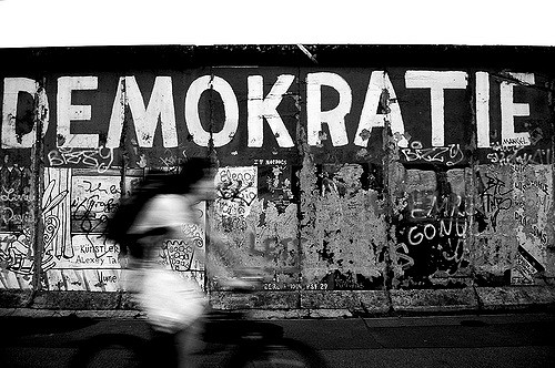 Demokratie Rad