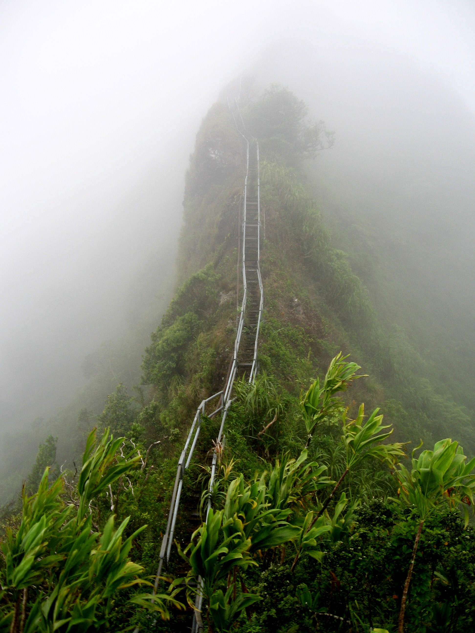 Image of Haiku Ladder, stairs disappear in the mist. Representing that the Kaizen way of small improvements every day will lead to unknown heights.