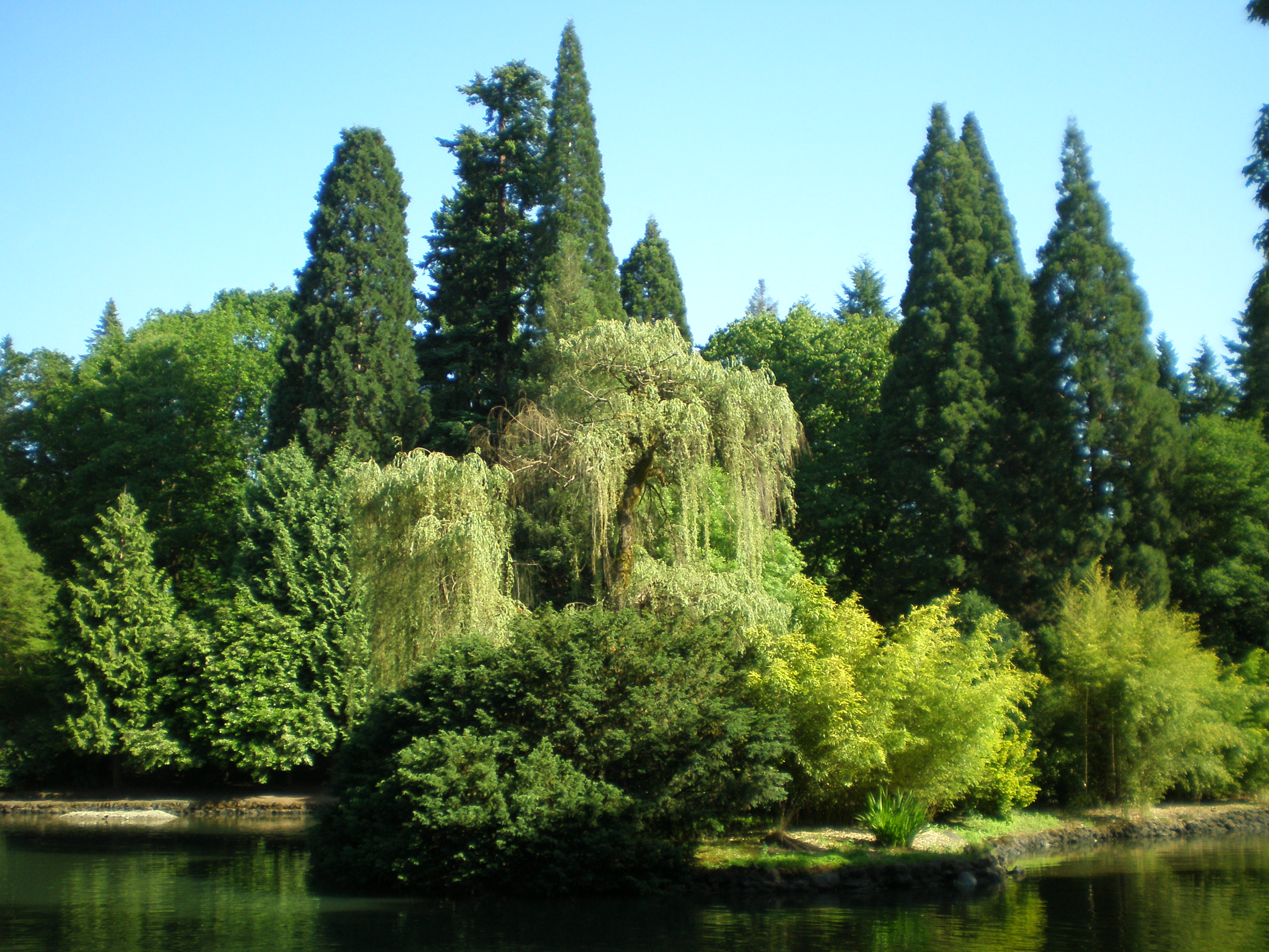 Image result for laurelhurst park portland