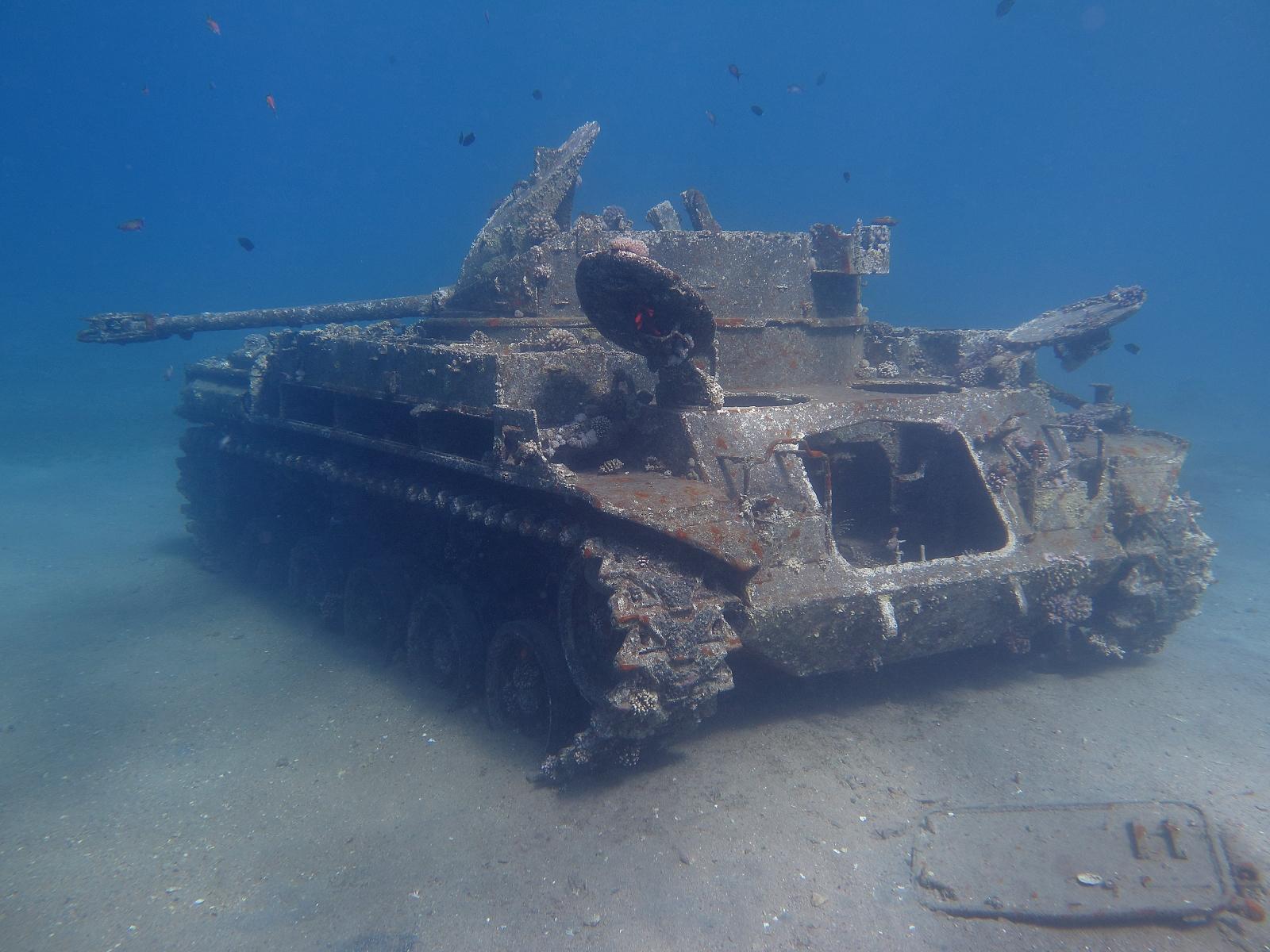 M42_self_propelled_AA_gun_%22Duster%22_in_the_Red_Sea_of_Jordan.jpg