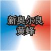 NOH Logo ZhWN.png