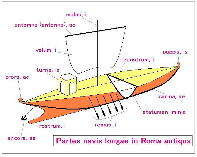 File navis longa la jpg wikimedia commons for Parti di una barca a vela