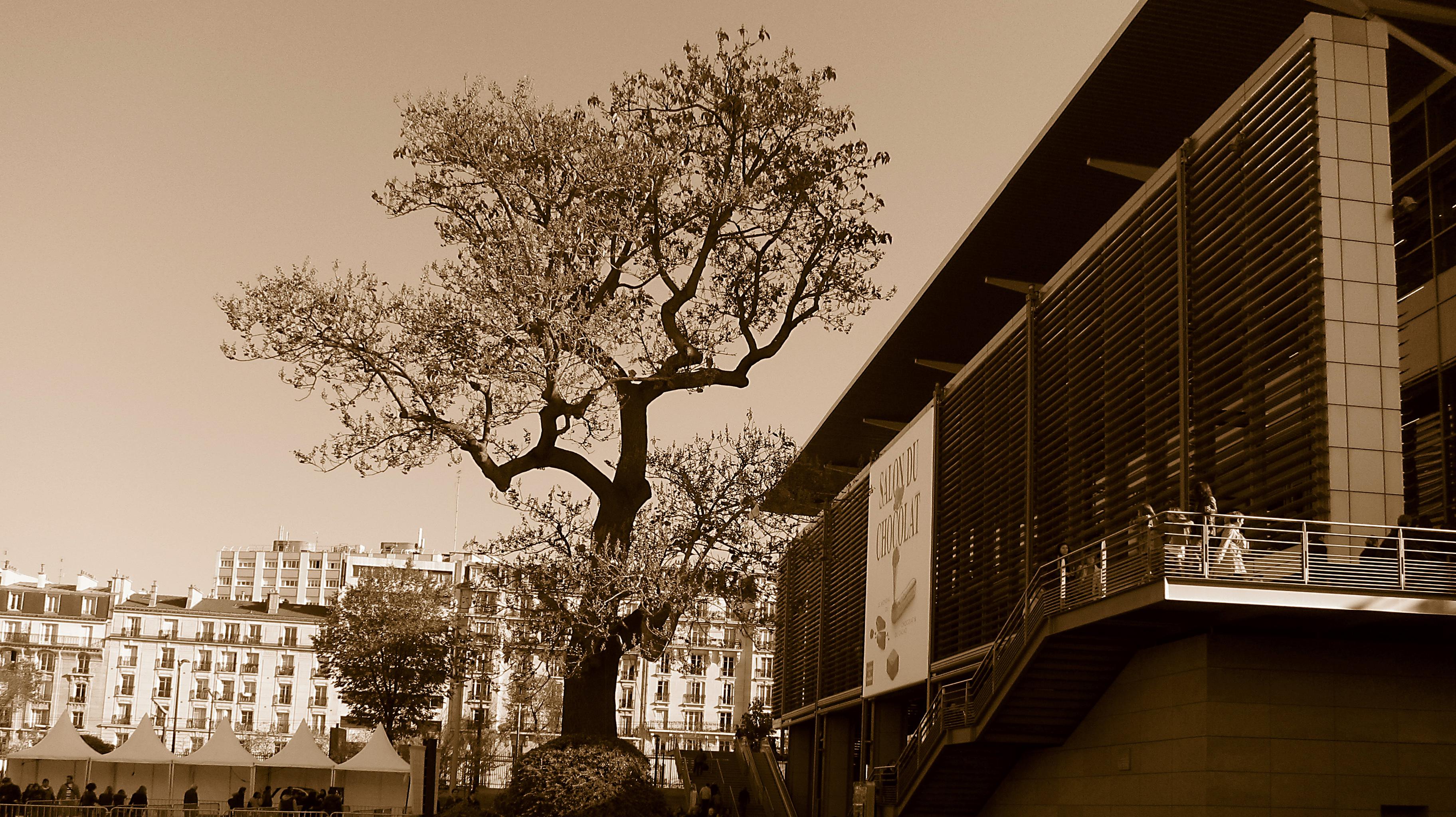File list wikimedia commons - Paris porte de versailles parc des expositions ...