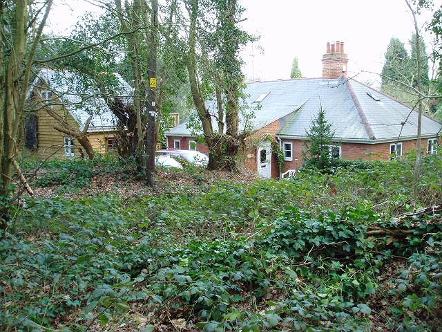 Pensioner's Box - Danbury Common - geograph.org.uk - 324092