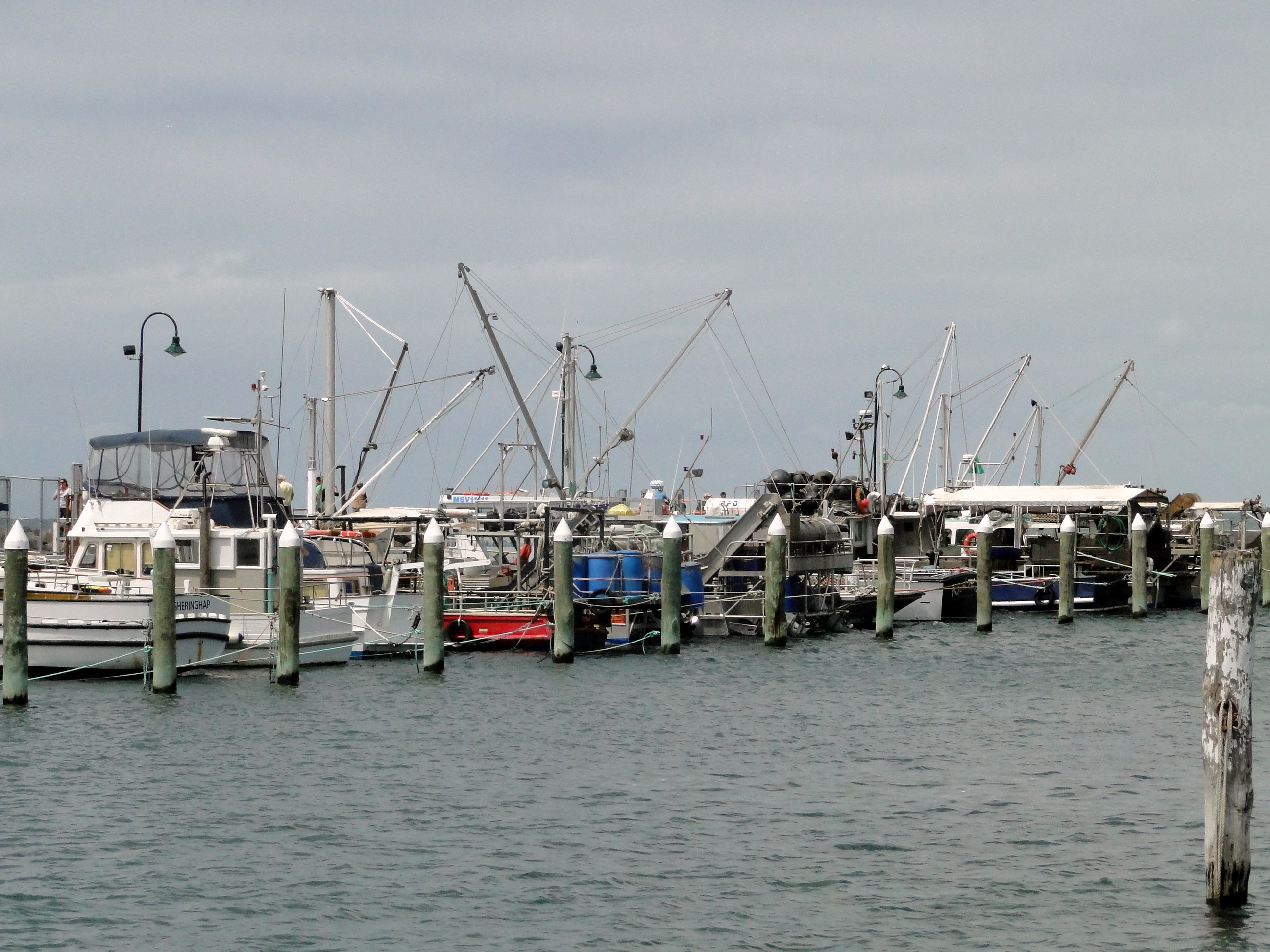 Portarlington Australia  City new picture : Portarlington pier and boats Wikimedia Commons