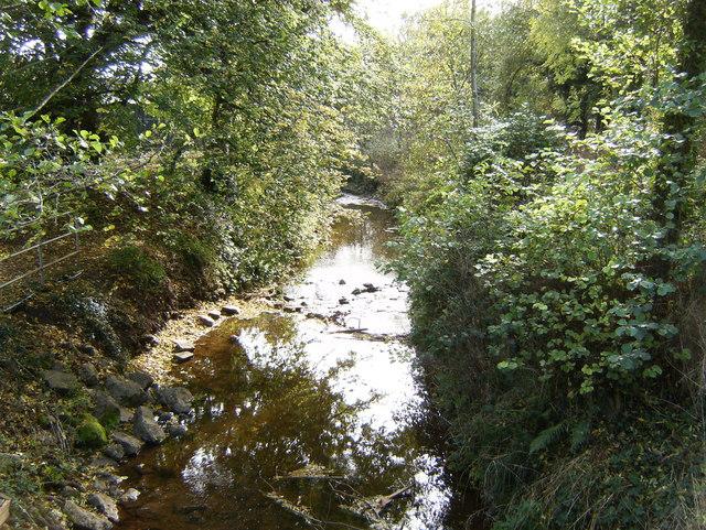 River Dore, Peterchurch - geograph.org.uk - 1555240