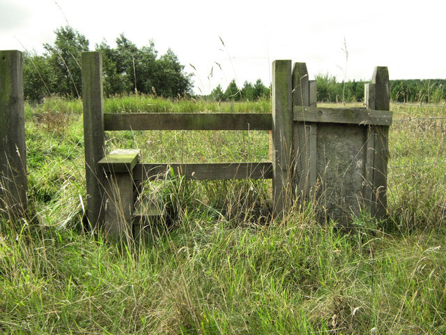 Stile with Dog Flap - geograph.org.uk - 1520996