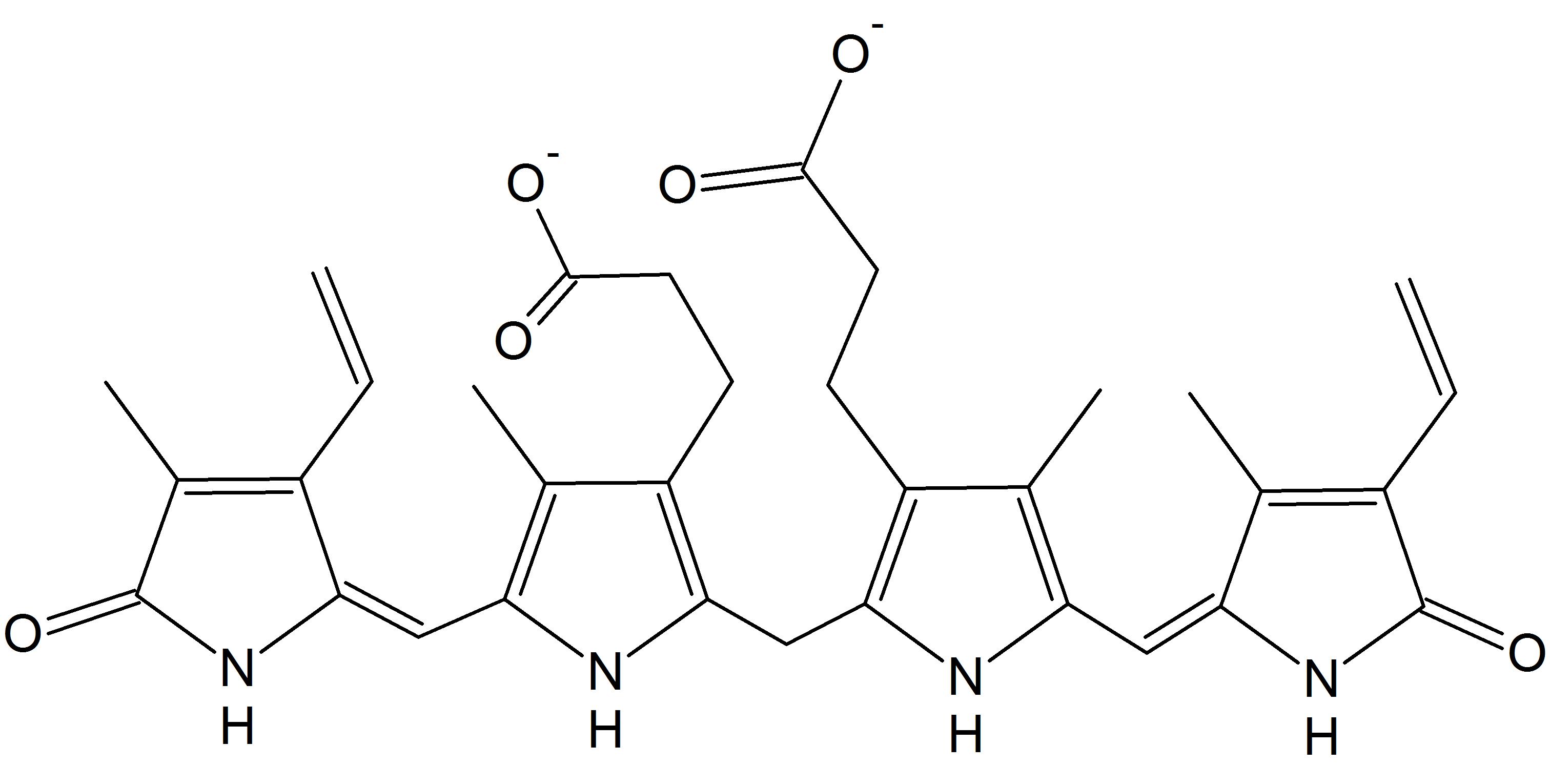 file:structure of bilirubin - wikimedia commons, Skeleton