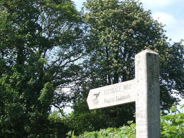 Teesdale Way - geograph.org.uk - 459162