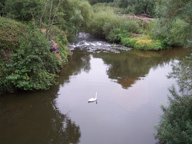 The River Teme from The Bransford Bridge - geograph.org.uk - 54988