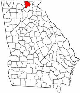Union County Georgia.png