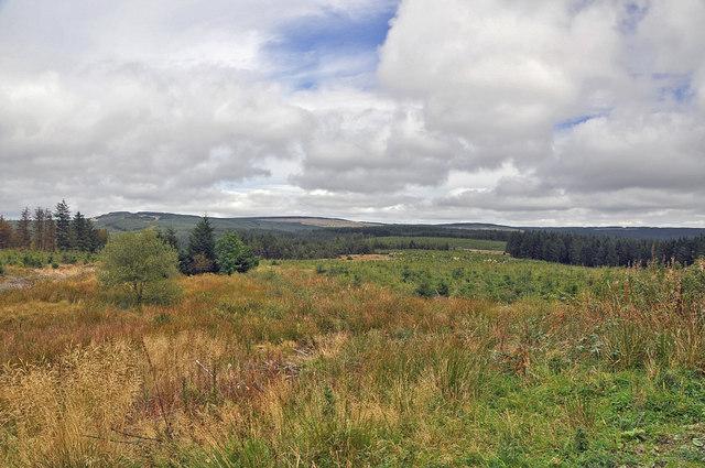 View toward Coed Morgannwg Way - Mynydd Blaen-nant-du - geograph.org.uk - 1504348