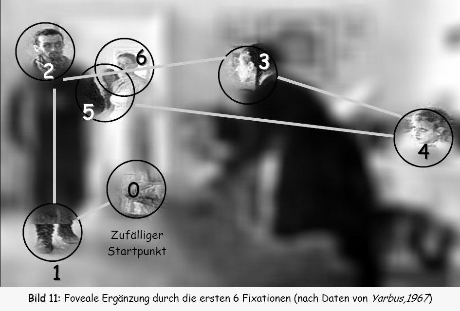 Eye movement - Wikipedia