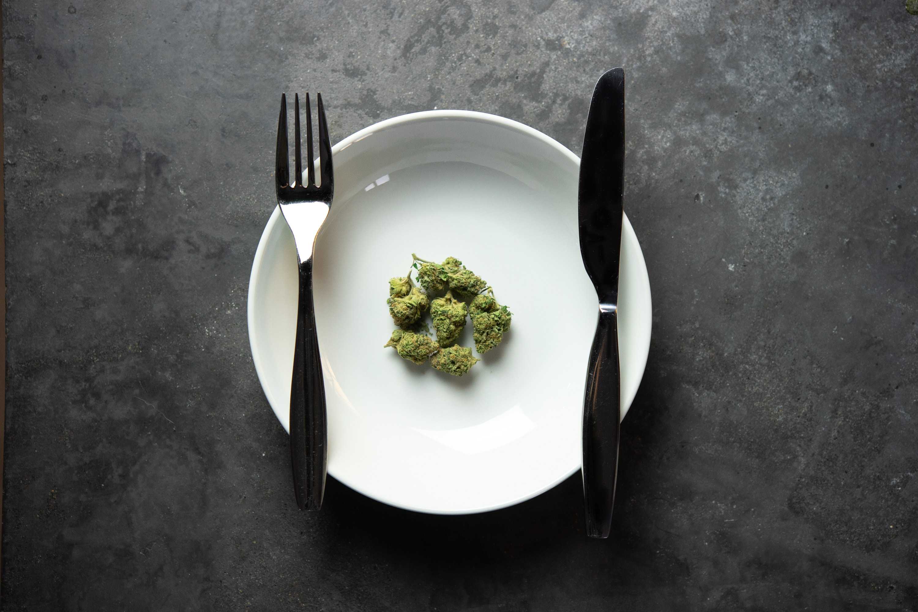 Nugs on a White Plate with Silverware on a Grey Countertop object has role: photographer author name string: Sherpa SEO Wikimedia username: Sherpa SEO