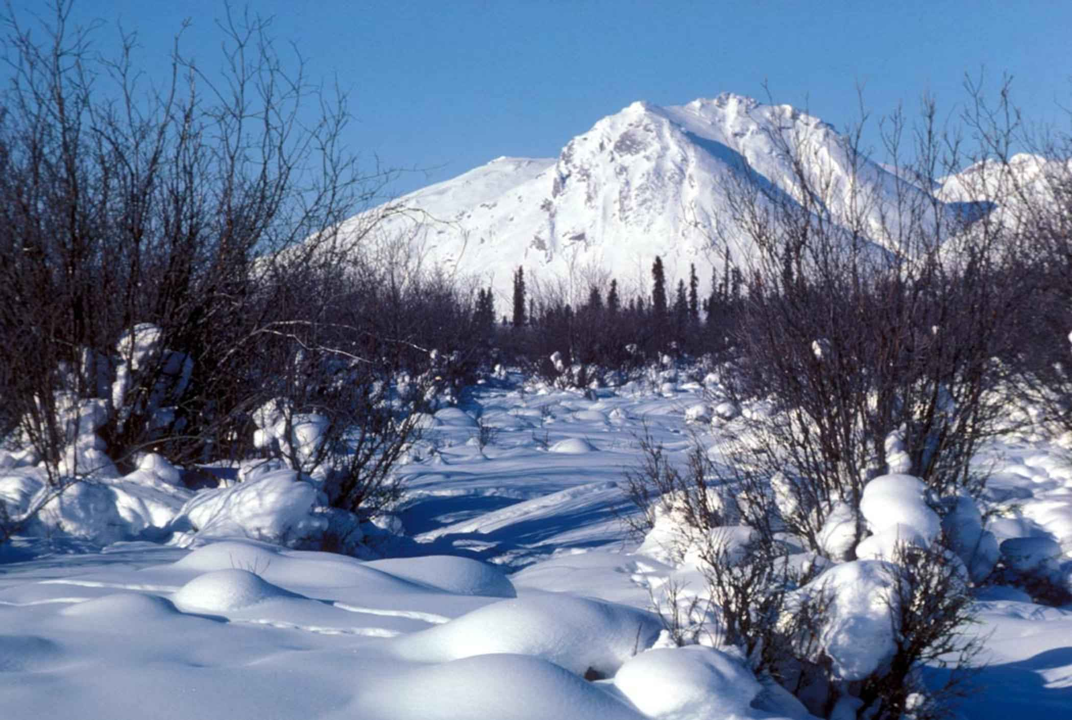 File Winter Scenic Of Arctic National Wildlife Refuge With