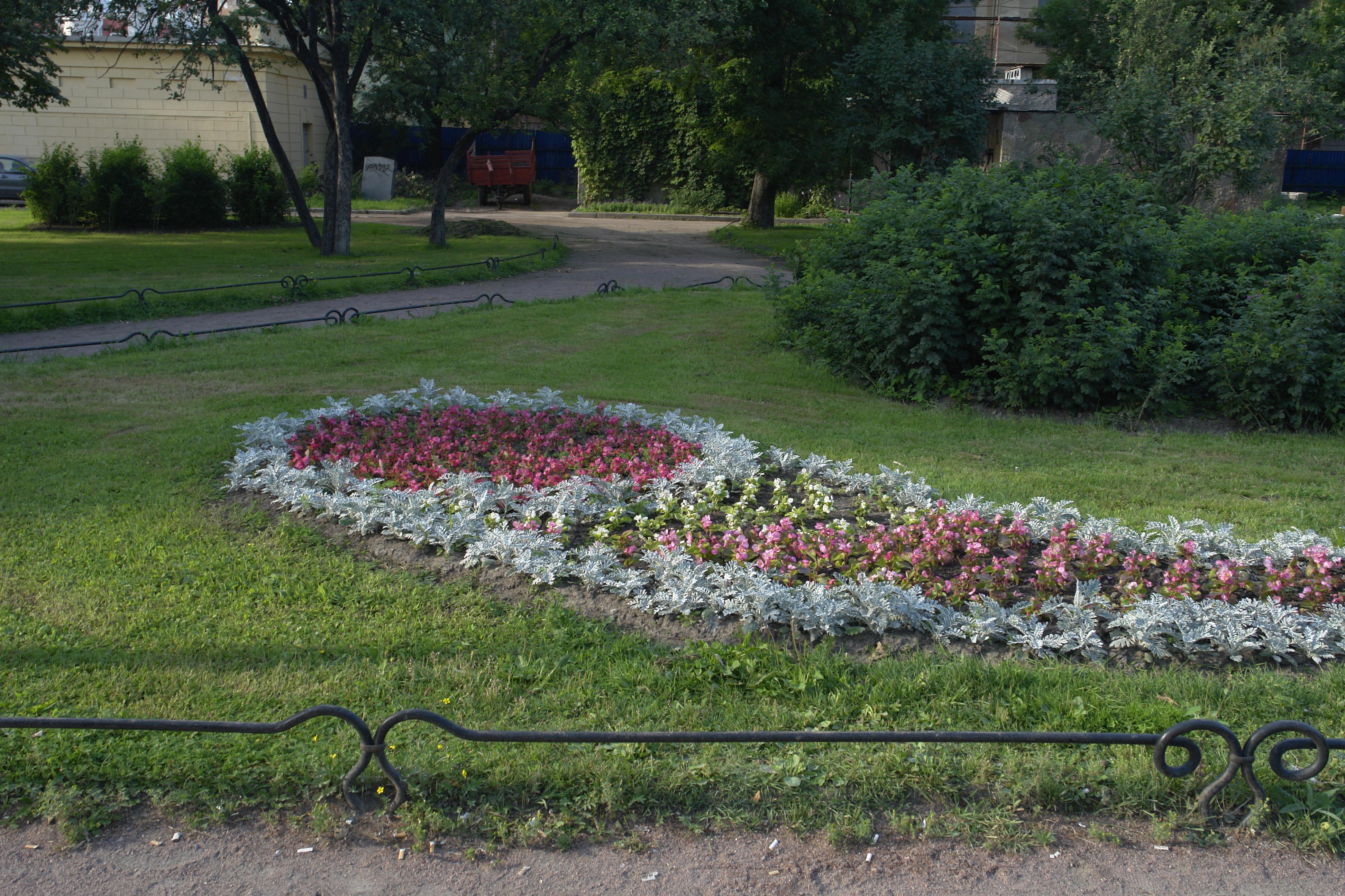 Газон в Таврическом саду