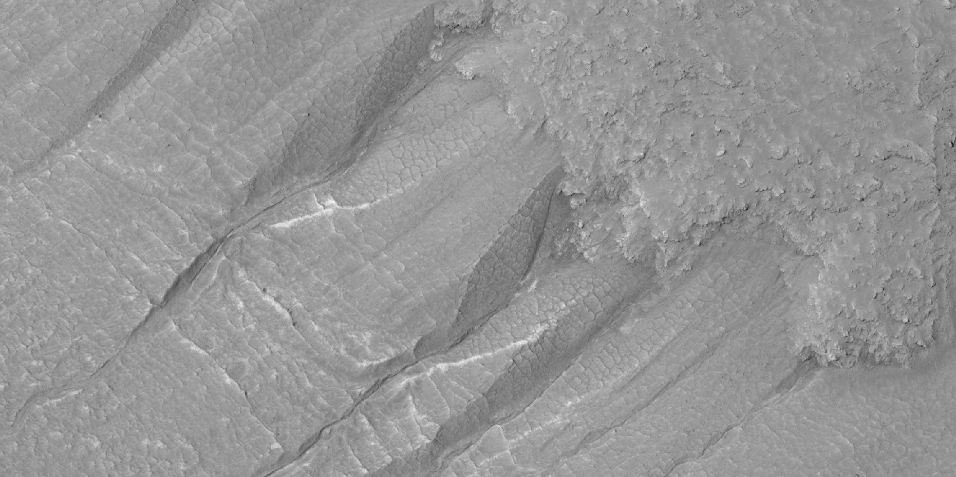 Close view of gullies in crater Polygons are visible in this close view.