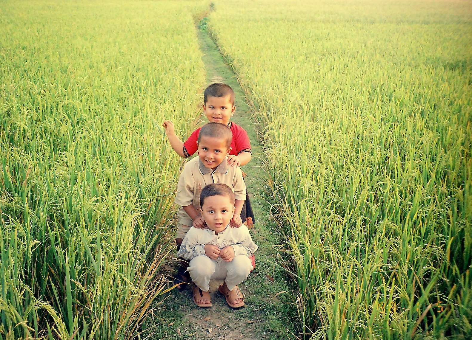 Http Commons Wikimedia Org Wiki File Bangladesh Children In Field Jpg