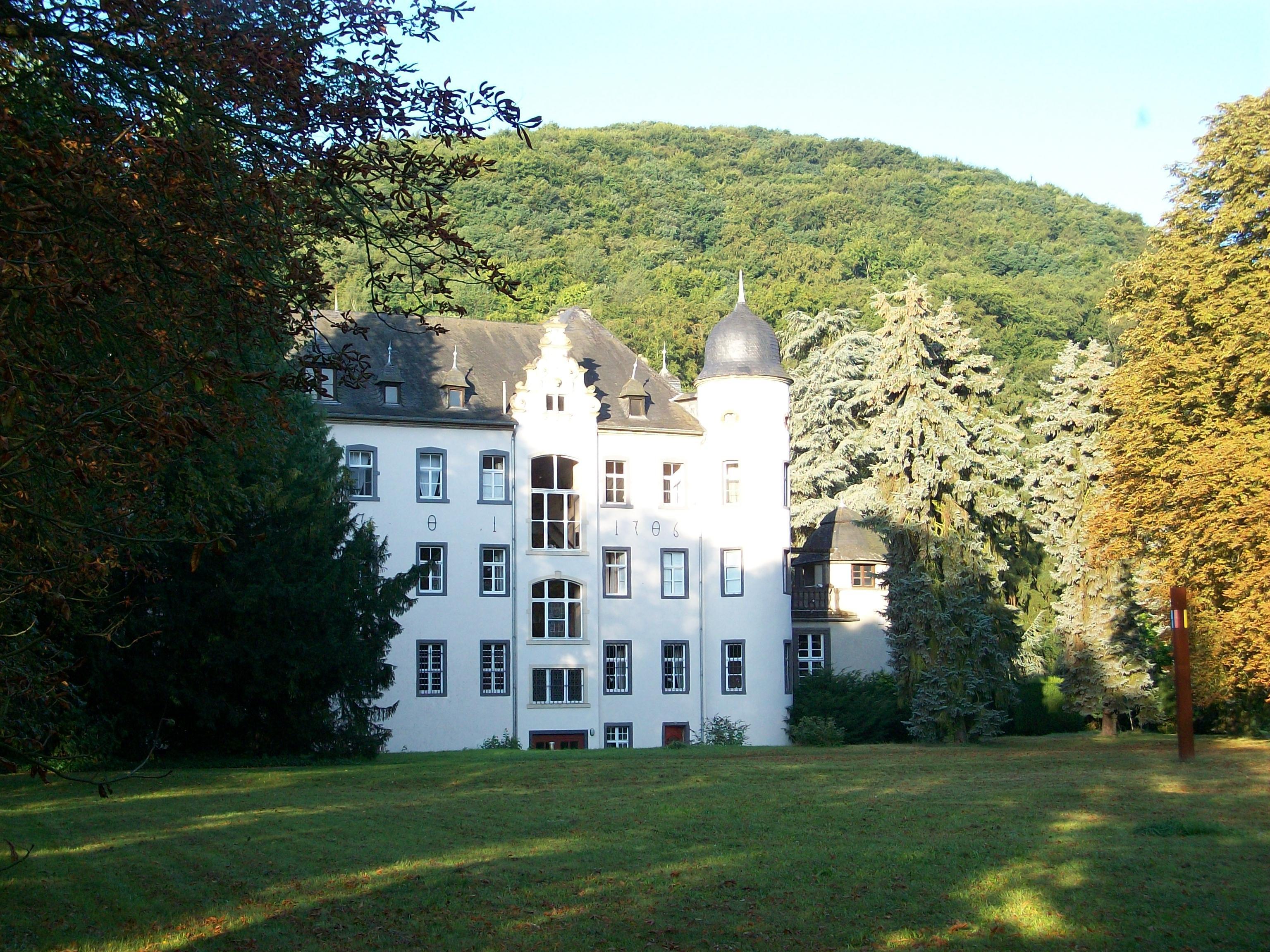 Billedresultat for Burg Namedy
