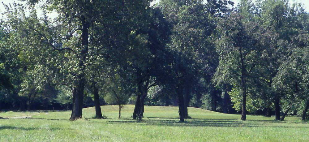 the cahokia mounds essay