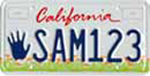 California license plate Kids sample.jpg