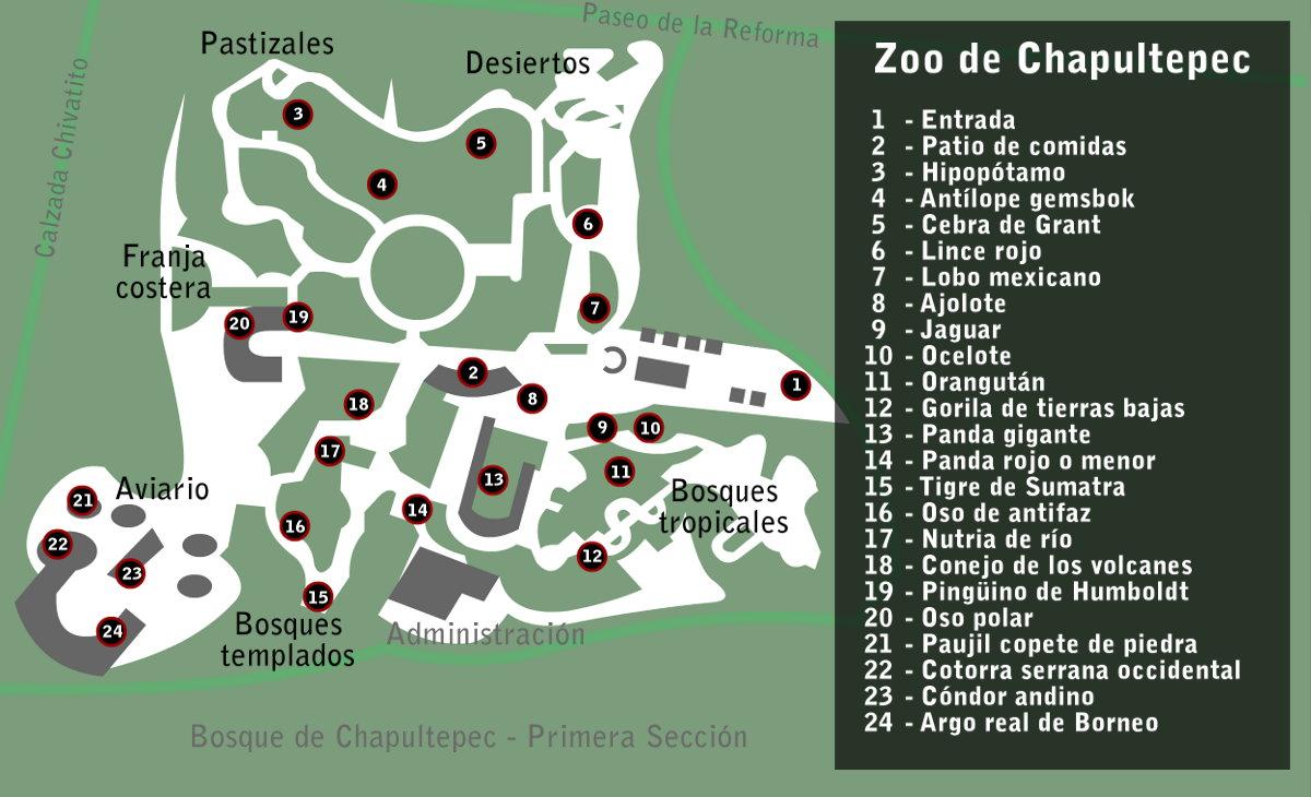 Chapultepec Zoo - Wikiwand