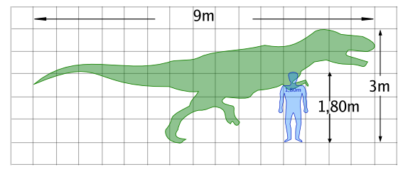 dinosaur human comparison