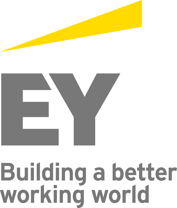 Image result for ernst and young