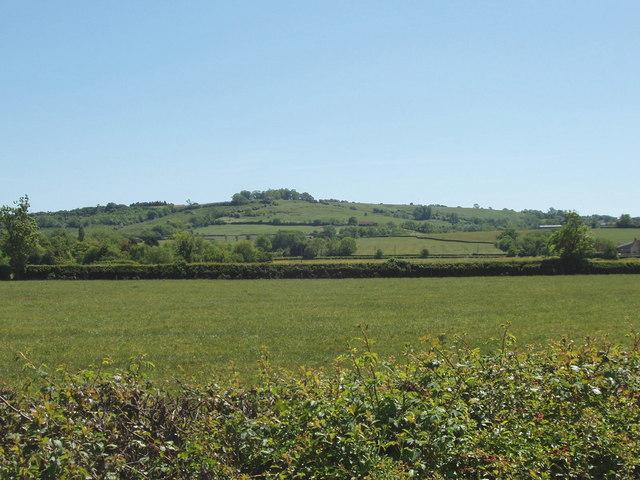 Fields at Piddington - geograph.org.uk - 180106