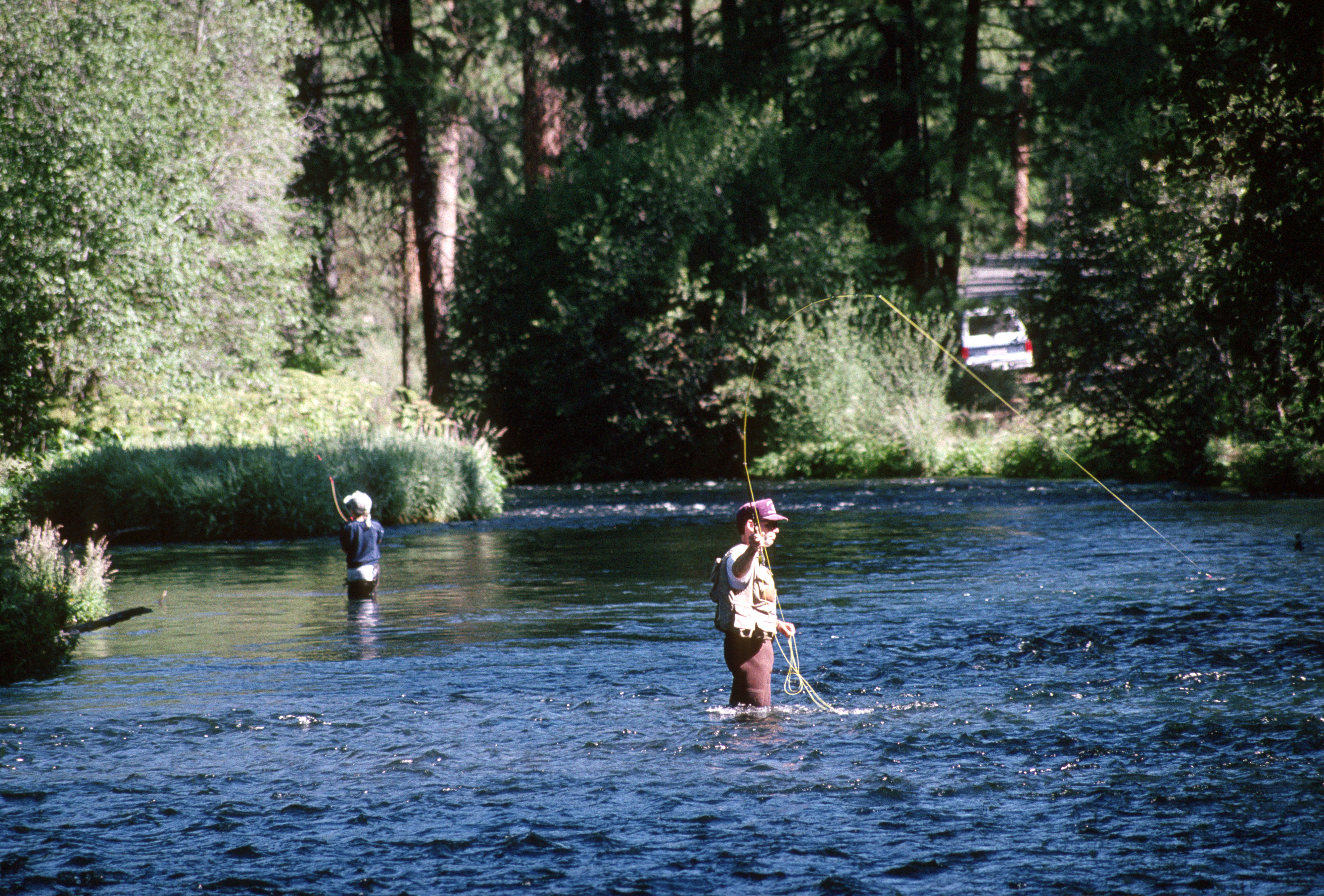 File:Fly fishing Metolius River, Deschutes National Forest