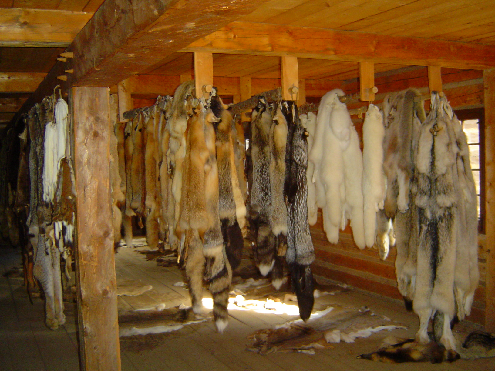 File furs inside fur stores jpg wikimedia commons for Stor fur gartenteich